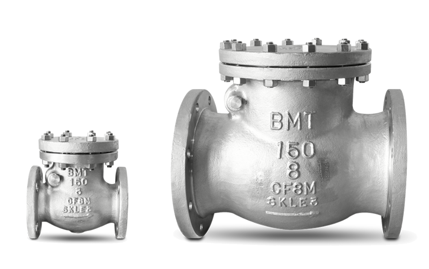 Cryogenic Check Valves